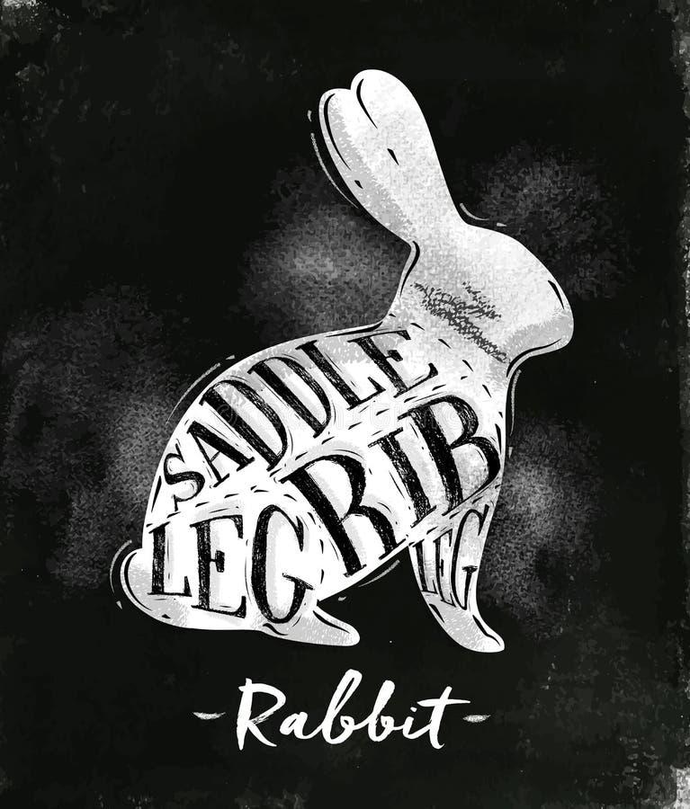 兔子切口计划白垩 库存例证