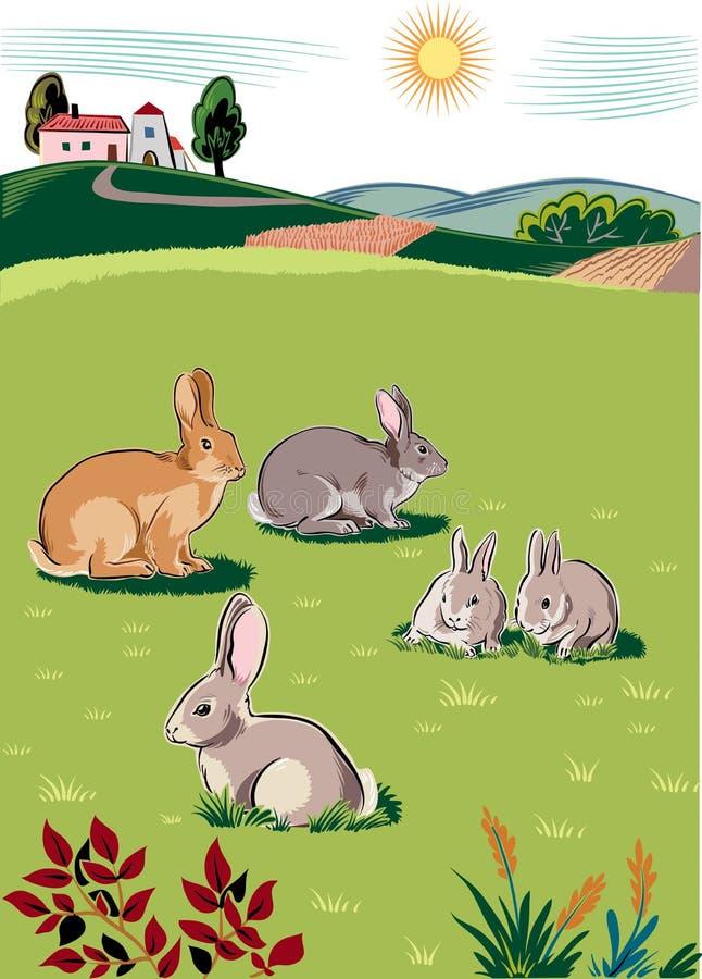 兔子和兔宝宝 库存例证