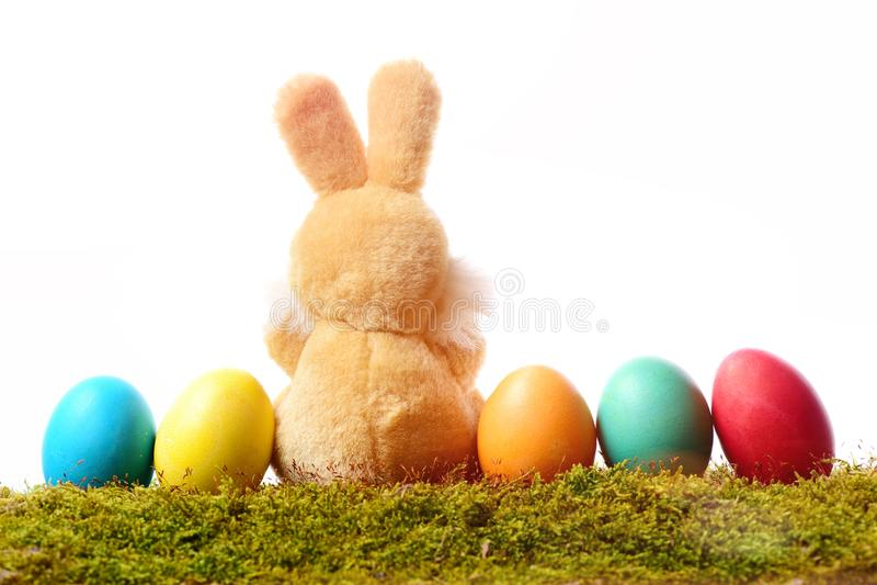 兔子玩具,在白色隔绝的绿色青苔的复活节彩蛋 库存照片