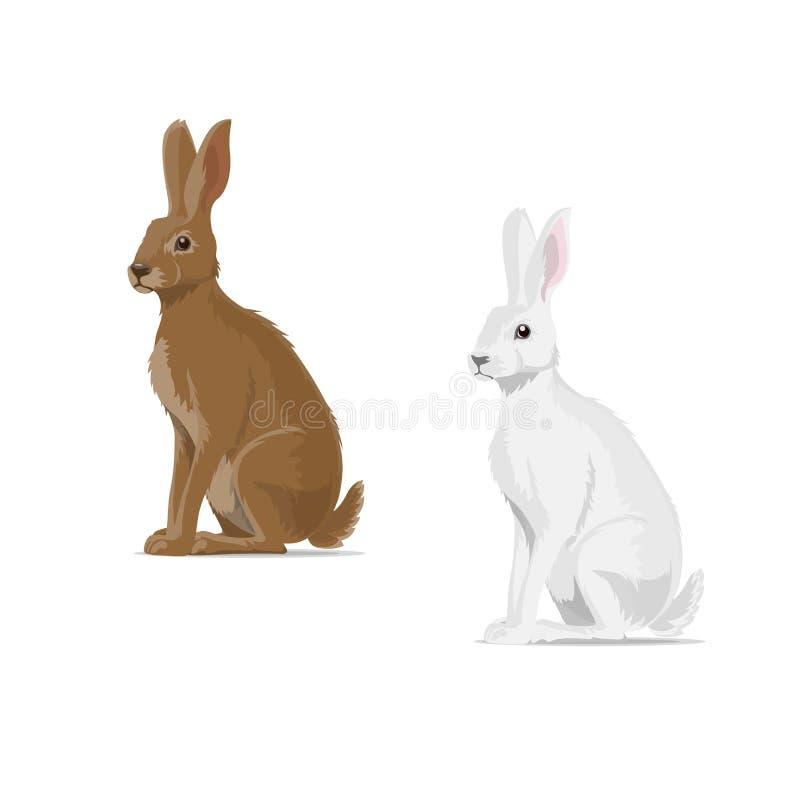 兔子野兔传染媒介动物平的象 向量例证