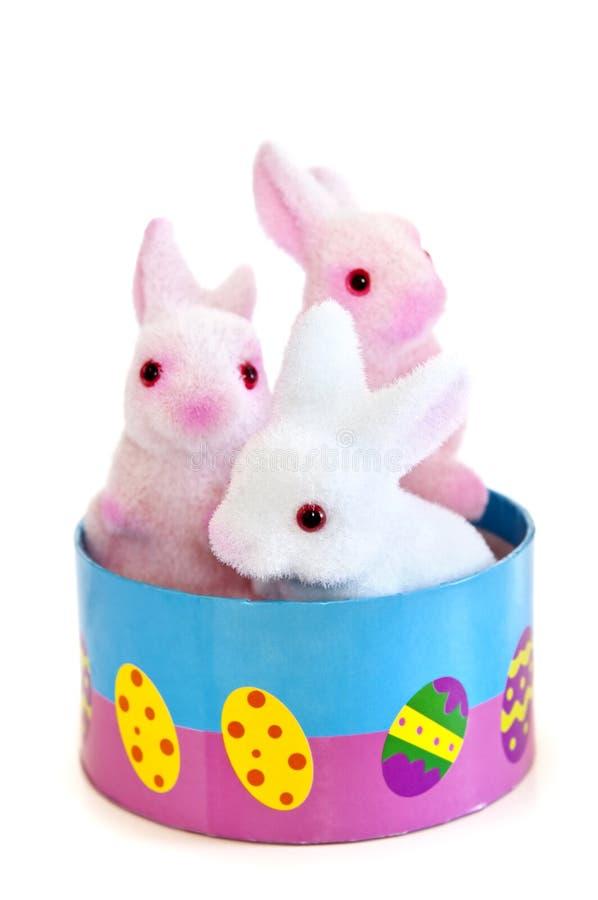 兔宝宝复活节玩具 库存照片