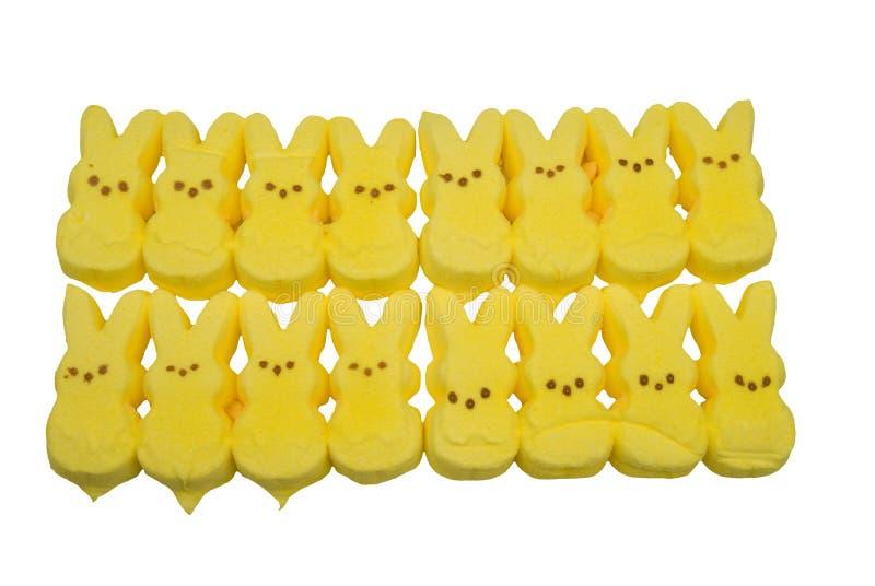 兔宝宝糖果黄色 免版税库存图片