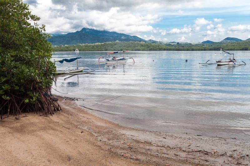 全国西部公园的海滩在巴厘岛 库存图片