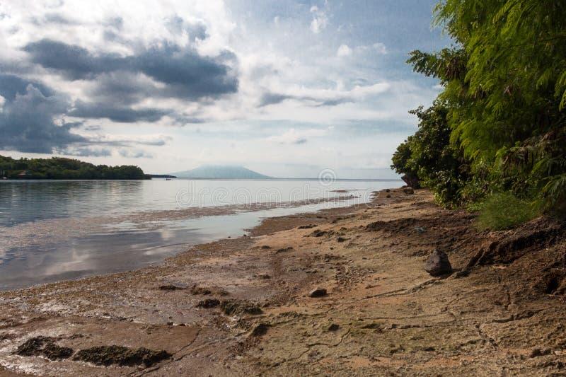 全国西部公园的海滩在巴厘岛 免版税库存照片