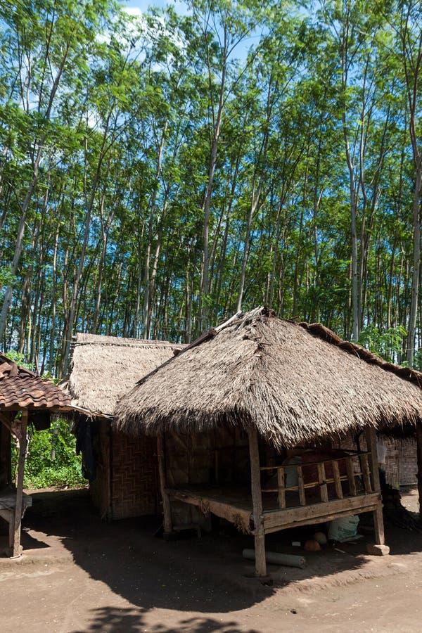 全国西部公园的海滩在巴厘岛 图库摄影
