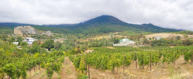 全景克里米亚半岛横向的山 免版税库存图片