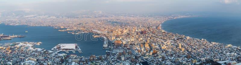全景冬天视图日本北海道函馆市 免版税图库摄影