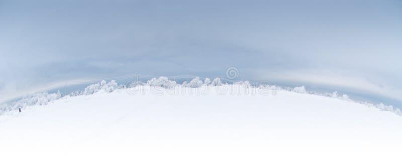 全景冬天 免版税图库摄影