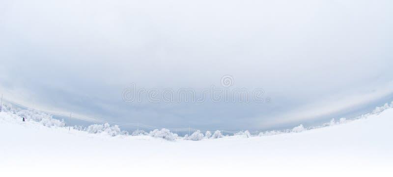 全景冬天 库存照片