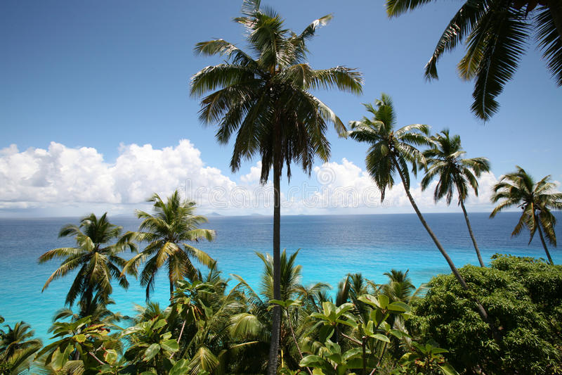 全景塞舌尔群岛 免版税库存图片