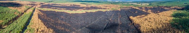 全景大森林火灾的区域-,鸟瞰图 免版税库存图片