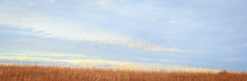 全景大草原的小山 库存照片