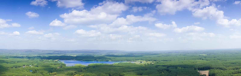 全景天空云彩和森林。 免版税图库摄影