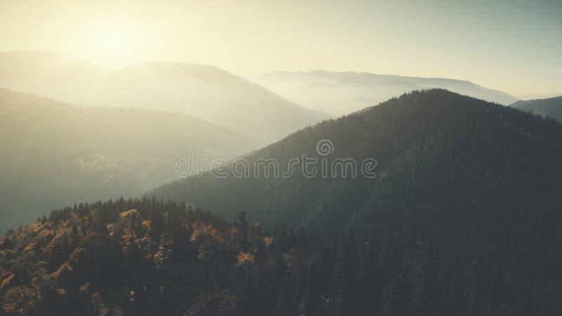 全景山峰森林倾斜鸟瞰图 库存图片