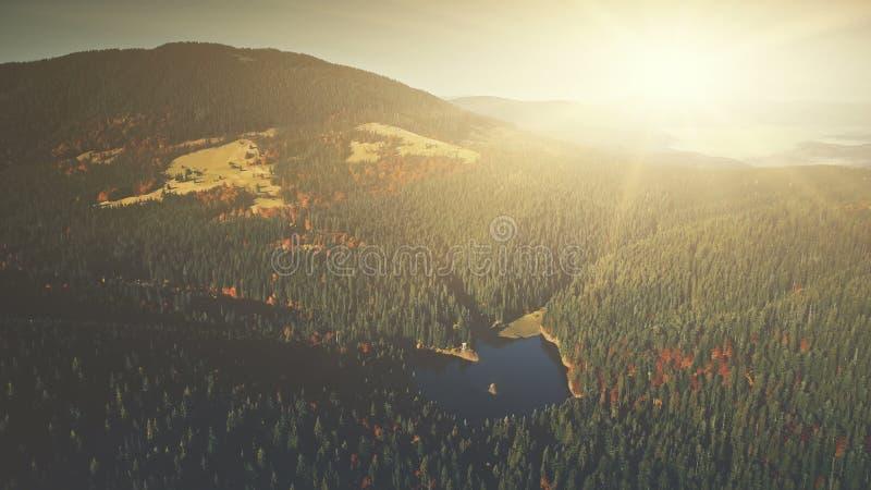 全景山林业倾斜黎明鸟瞰图 库存照片