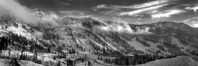 全景手段滑雪雪鸟 免版税库存图片