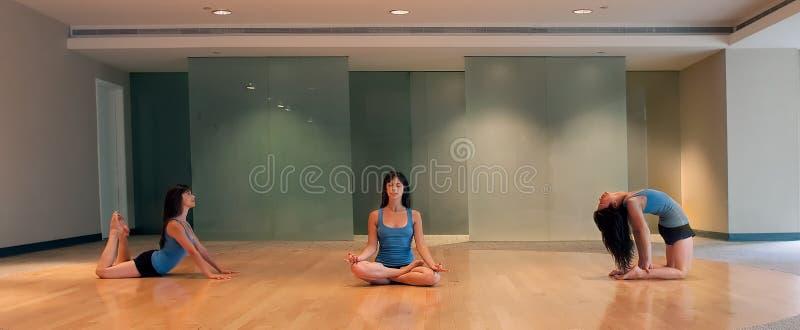 全景摆在三女子瑜伽 免版税图库摄影