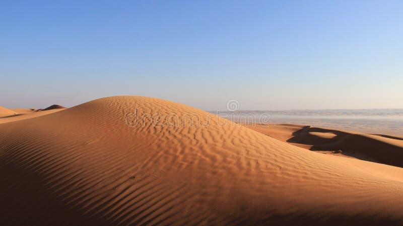 全景有早晨薄雾的视图沙漠 库存图片