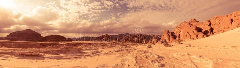 全景沙子沙漠西奈,埃及,非洲 免版税库存照片