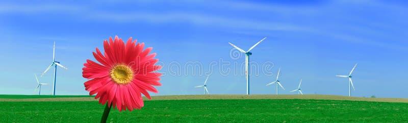全景涡轮风 免版税库存照片