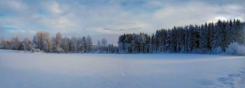 全景照片og冬天风景在海德马克郡县挪威 免版税库存照片