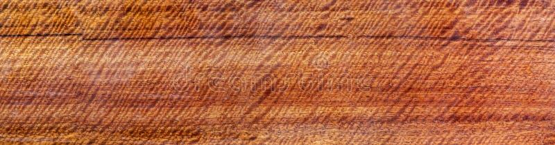 全景真正的木头有老虎条纹或卷曲条纹五谷,工艺的木异乎寻常的美好的样式 免版税库存图片