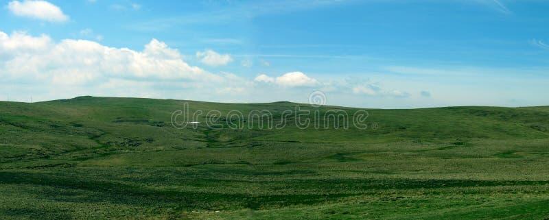 全景绿色的高地 库存图片