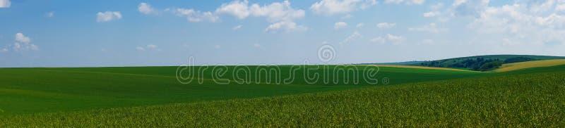 全景美好的风景领域视图 免版税库存照片