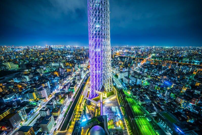 全景都市城市地平线鸟瞰图在暮色天空和氖夜下在东京,日本 免版税库存照片