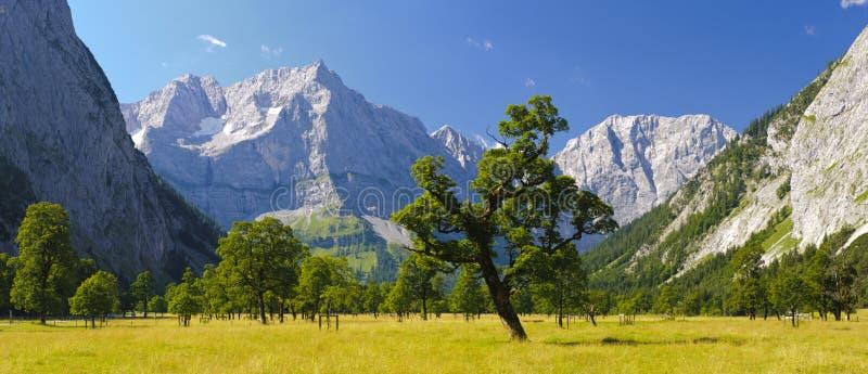 全景风景在奥地利 库存照片