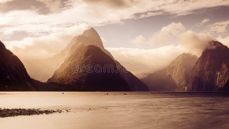 全景风景观点的日落的,新西兰Milford Sound 免版税图库摄影