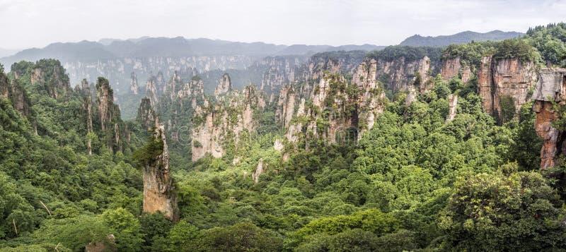 全景:田仔山在武陵源风景区,张家界,湖南,中国的专栏石灰岩地区常见的地形 免版税库存图片