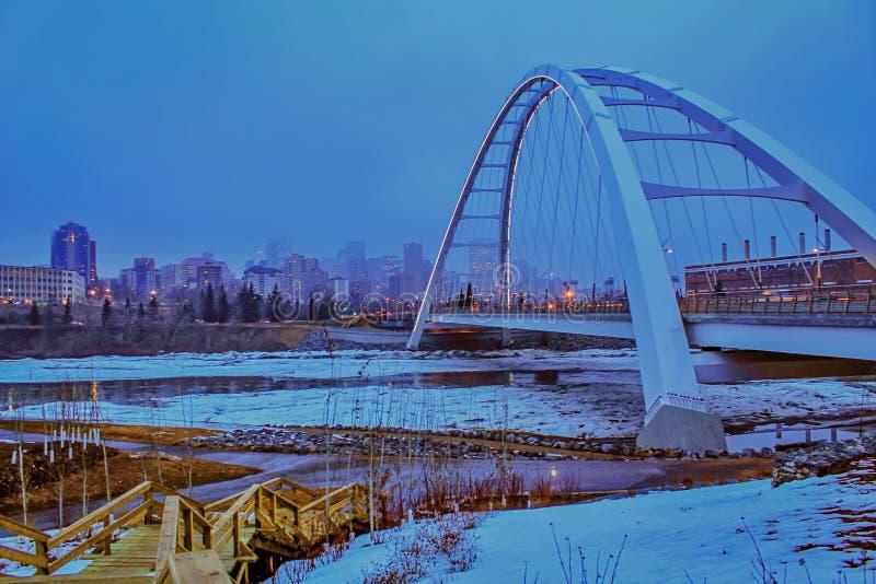 全景Walterdale桥梁夜间风景 库存图片