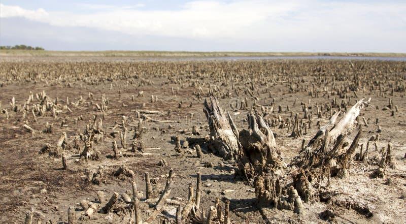 全球性变暖和污染概念 免版税图库摄影