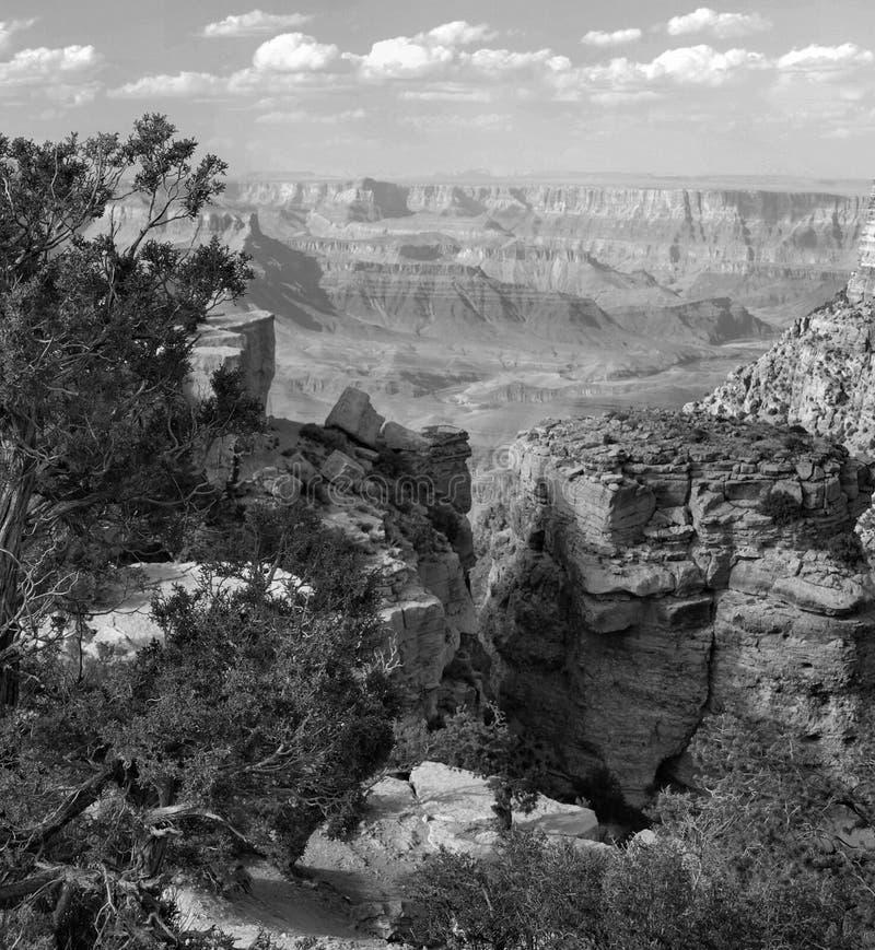 全部下午的峡谷 库存图片