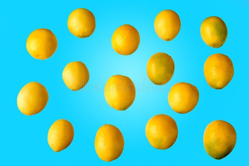 全部整个黄色新鲜的柠檬 免版税库存图片