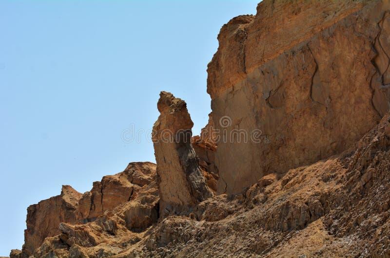 全部的在死海,以色列附近的妻子柱子 免版税库存图片