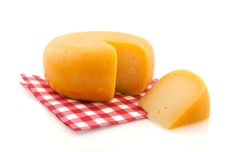 全部的干酪 免版税库存照片
