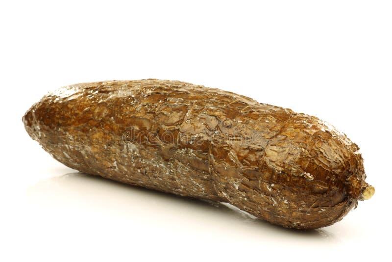 全部的木薯一 免版税库存照片