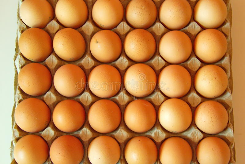 全部连续鸡蛋,平面图 图库摄影