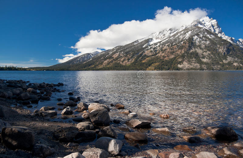 全部鹪鹩湖国家公园teton美国 库存照片