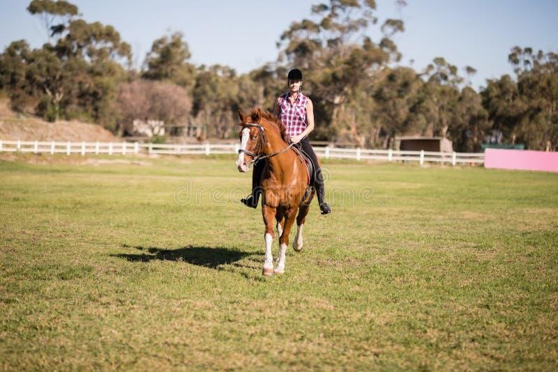 全长女性骑师马术 免版税库存照片