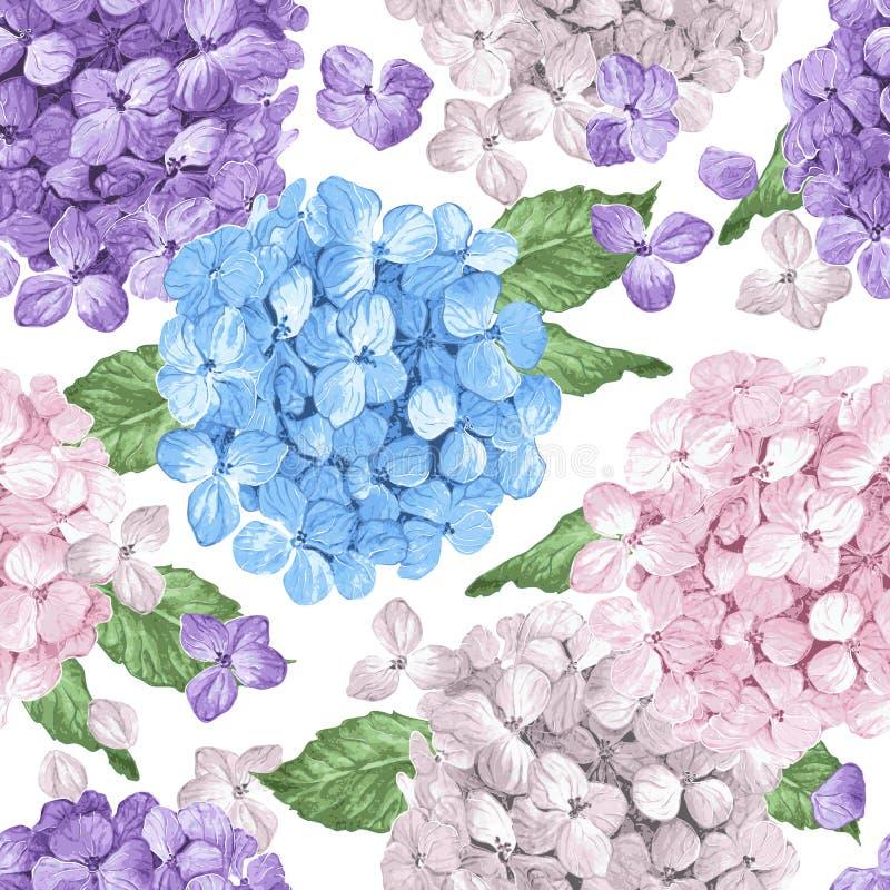 八仙花属开花,瓣和叶子在水彩样式在白色背景 纺织品的无缝的样式,包裹 皇族释放例证