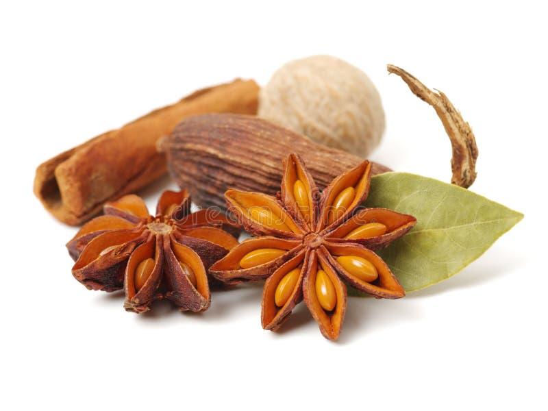 八角、桂香、海湾叶子和豆蔻果实` :可口食谱的芬芳香料 免版税库存照片