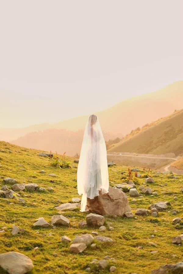 公主 摆在长的平衡的豪华礼服的年轻美丽的俏丽的妇女反对反对山的背景 样式fa 免版税库存照片