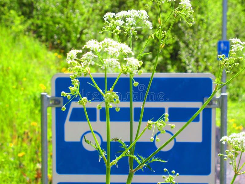 公交车站的一个标志在一个通常村庄在挪威 免版税库存图片