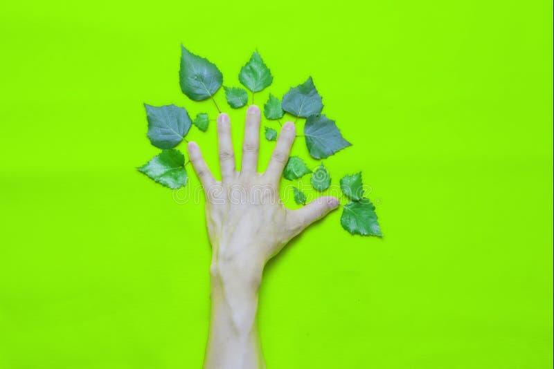 公司环境责任概念:有叶子的人的手以在绿色背景的一棵树的形式 免版税库存图片