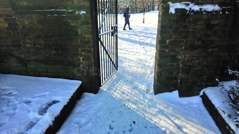 公园伦敦零度以下tempature结冰 库存照片