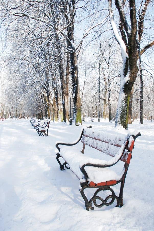 公园冬天 免版税图库摄影