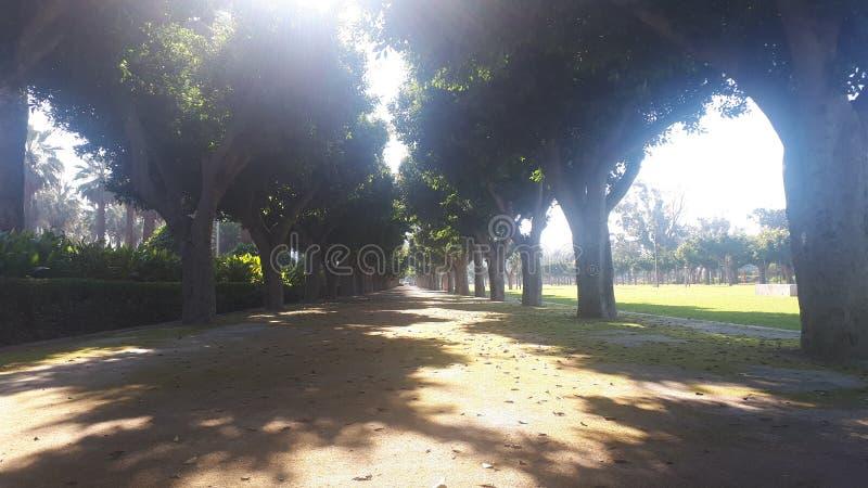 公园卡萨布兰卡 库存照片